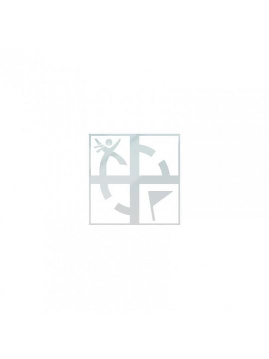 Samolepka - Logo GS na sklo vniřní