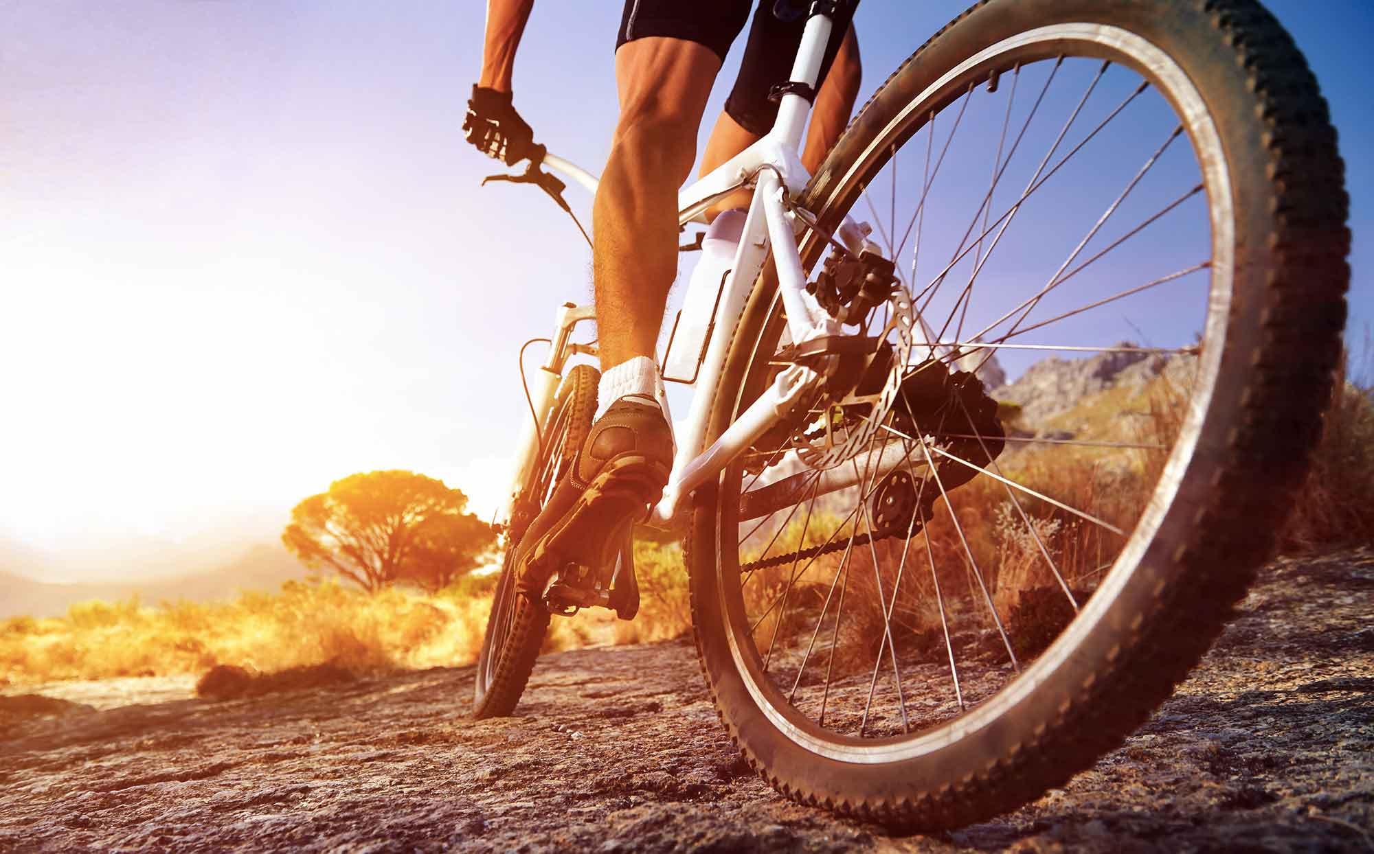 Cyklonavigace